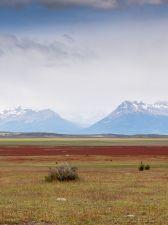 P_02_Patagonien_2019-Doro